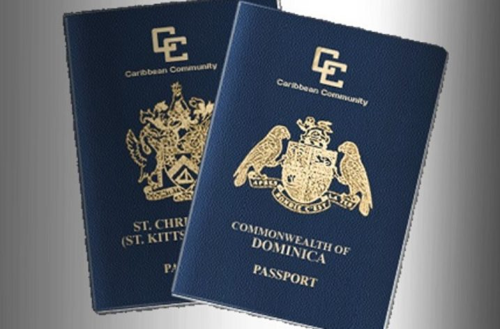 The Passport Business