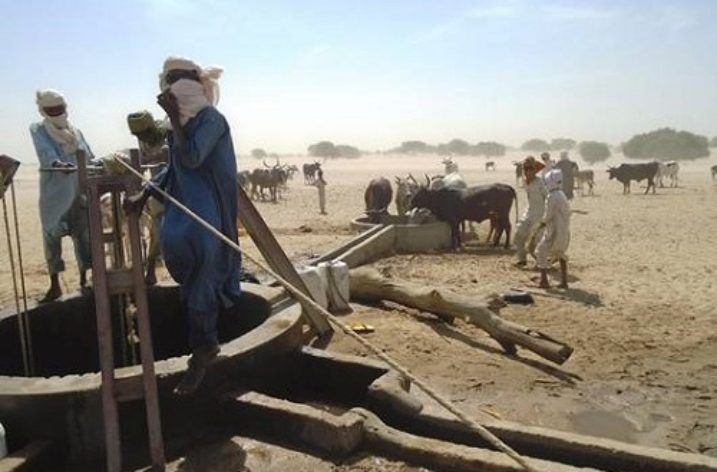 Emergency support to herders affected by regional crisis in Lake Chad Basin