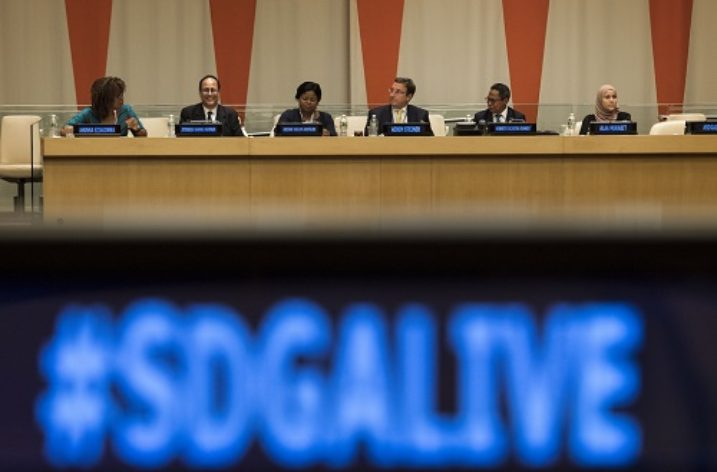 Baggage of the 2030 Sustainable Agenda