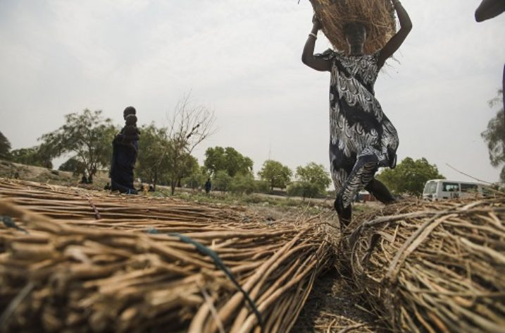 Capturing The Informal Economy In South Sudan
