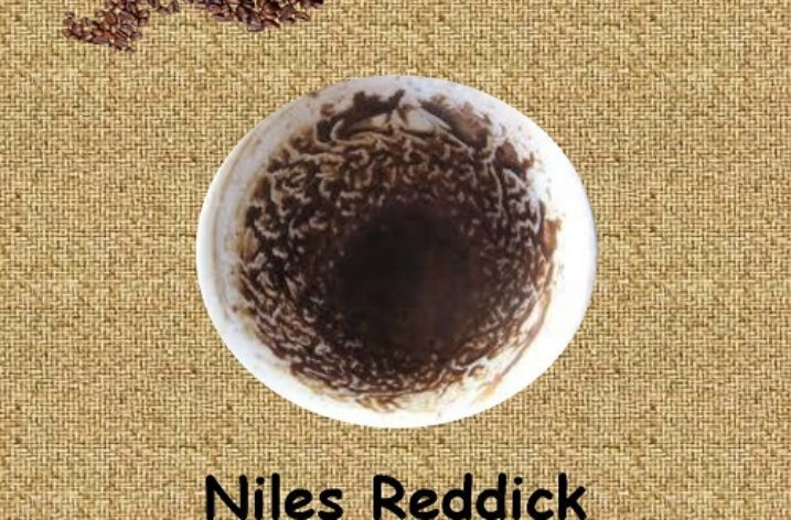 'Reading Coffee Grounds and Other Stories' by Niles Reddick: A Review