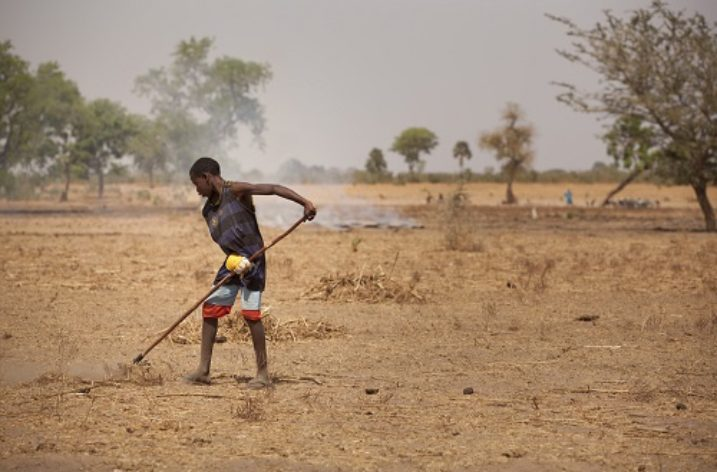 NGO helping alleviate water crisis affecting communities in north/central Senegal