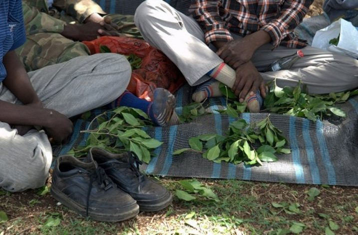 Ethiopia: Nipping the problem of addiction in the bud
