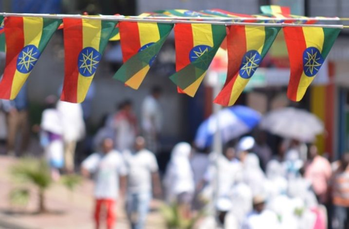 Ethiopia: Diaspora attracted by wind of change, willing to catalyze development